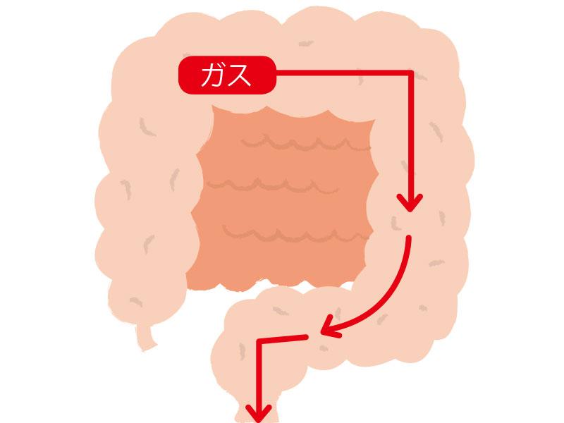 【医師考案】お腹の張りを解決! 4つのガス抜きマッサージ で大腸を刺激!