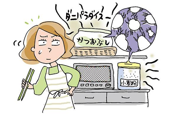カビ・ダニ対策|キッチン&お風呂場に増殖中!? 対策法をプロが伝授