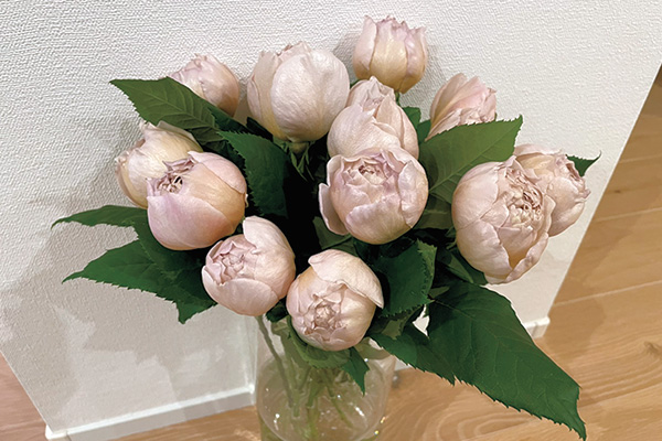 高橋愛の花とインテリア|花を買うときは2~3本♡ 少しずつ花瓶に飾るのが好き!